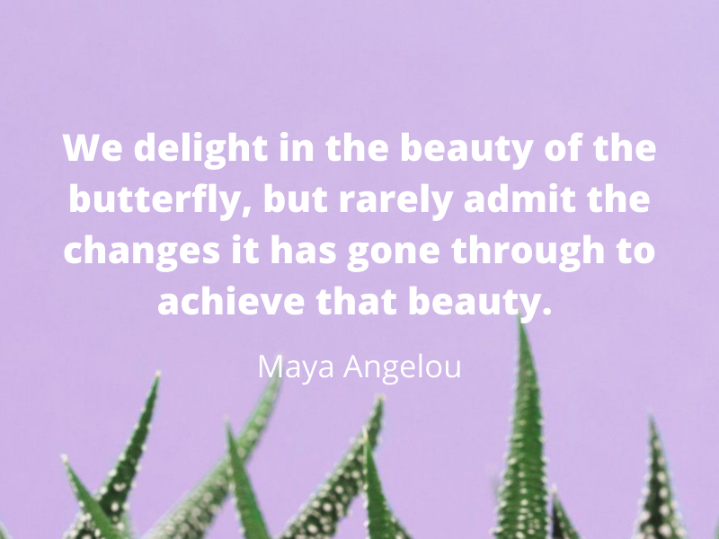We delight in the beauty of the butterfly, but rarely admit the changes it has gone through to achieve that beauty.